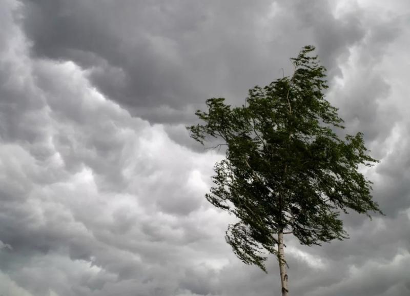 В центральных районах края 2 и 3 августа ожидаются дожди, грозы, град и сильный ветер